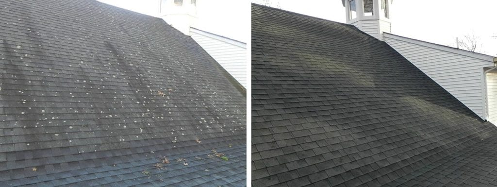 Window Butler Before and After: Roof Cleaning
